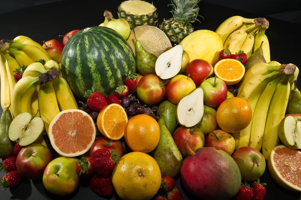 호주문화원 fruits